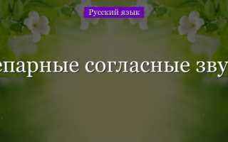 У звонкая или глухая гласная. Парные и непарные, звонкие и глухие, мягкие и твердые согласные звуки в русском языке