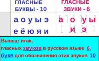 Гласные. Сколько в русском языке гласных и согласных звуков