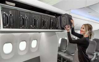 Ручная кладь в самолете: размеры, вес, правила. Что можно брать в самолет