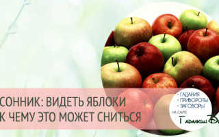 К чему снится много яблок на земле. К чему снятся яблоки: толкование по различным сонникам