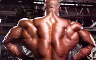Подборка упражнений мужчинам для спины в домашних условиях. Как укрепить мышцы спины в домашних условиях