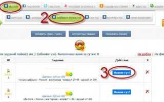 Как заработать на лайках и репостах в социальных сетях: рекомендации, советы и результаты. Заработок на лайках или все секреты как заработать на лайках реальные деньги