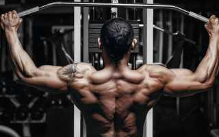 Обзор упражнений для развития спины. Упражнения для спины