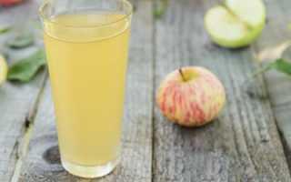 Яблочный компот для грудничка. Компот из яблок для грудничка: возраст младенца, состав, ингредиенты, пошаговый рецепт с фото, нюансы и секреты приготовления, самые полезные рецепты для детей
