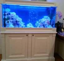 Крутая подставка под крупногабаритный аквариум своими руками