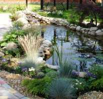 Дизайн садовых прудов