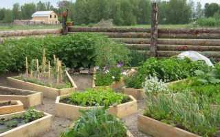 Французский огород на участке
