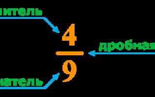 Простые количественные числительные примеры. Числительное