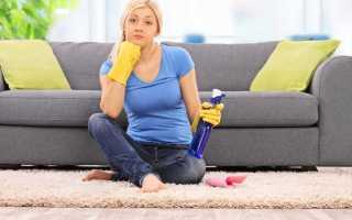Как отстирать кошачью мочу с дивана