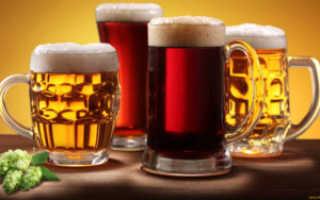 Сколько времени выводится пиво из организма мужчин и женщин. Через сколько времени выветривается пиво