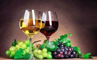 Как поставить вино из винограда в домашних. Как сделать вино из винограда: рецепт приготовления домашнего вина