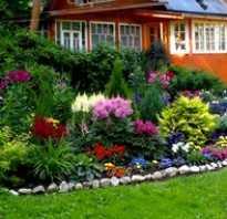 Как разбить цветник перед домом