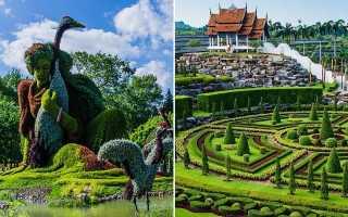 Ботанический сад в загородном доме