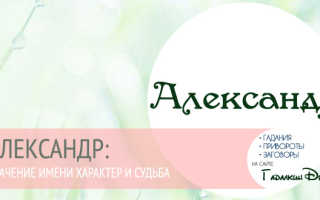 Александр (Саша): значение имени, характер и судьба мужчины. Что означает имя Александр